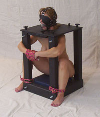 Bdsm male submissive